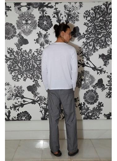 Hays Men Penye Erkek Uzun Kollu Üst Dokuma Uzun Alt Pijama Takımı Gri